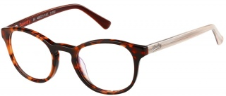 SUPERDRY 'CHIE' Glasses