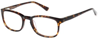 SUPERDRY 'JUDSON' Designer Glasses