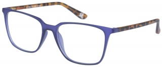 SUPERDRY 'LEXIA' Designer Glasses
