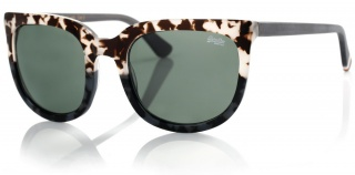 SUPERDRY SDS 'PHOENIX' Designer Sunglasses